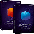 SOUND FORGE Pro 14 Suite - ESD